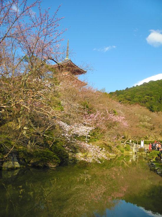 Kyomizudera calm pond area